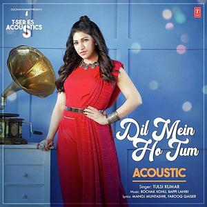 Dil Mein Ho Tum - Acoustics mp3 song Download PagalWorld.com